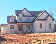 1005  Royal Fern Court Unit #OLD0117, Waxhaw image