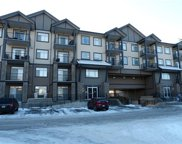 117 Copperpond Common Southeast Unit 219, Calgary image
