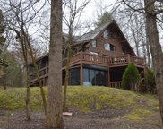 114 Lost Indian Trail, Warne image