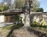 675 Channing Drive, Palm Harbor image