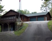288 Panther Creek Rd, Sevierville image