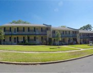 200 E 10th Avenue Unit 12, Mount Dora image