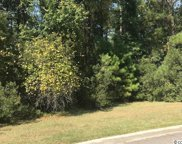 Lot 110 Damon Loop, Murrells Inlet image