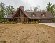1307 Paw Paw Road, Stoneville image