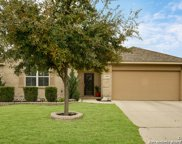 13003 Moselle Forest, Helotes image