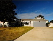 1717 Country Chalet Court, Apopka image