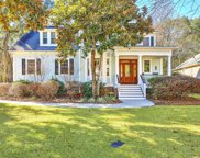 1204 Leaning Oaks Court, Mount Pleasant image
