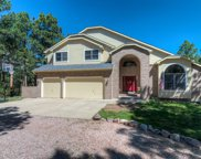 17375 Charter Pines Drive, Monument image