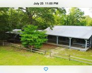 6007 Co Rd 41, Clanton image