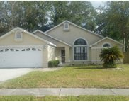 7324 Otter Creek Drive, New Port Richey image