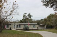 12509 Spottswood Drive, Riverview image