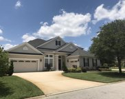 1030 DOVE HOUSE LN, St Augustine image