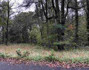 Tract 13 County Road 705, Riceville image