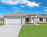 384 Hibiscus Drive, Poinciana image