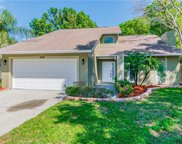 14911 Palmcrest Place, Tampa image