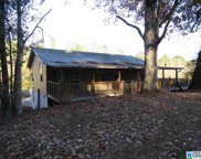 1120 Pleasant Valley Dr, Pell City image