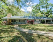 917 Cottage Hill Ave, Mobile image