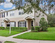 5837 Fishhawk Ridge Drive, Lithia image