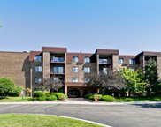 2150 Valencia Drive Unit 208A, Northbrook image