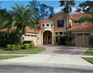 17303 Emerald Chase Drive, Tampa image