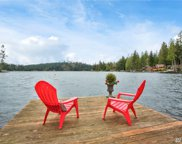507 NW Lake Roesiger Rd, Snohomish image