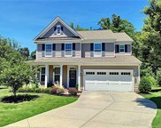 1240  Gold Rush Court, Fort Mill image