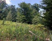 Indian Trail, Pine Bush image