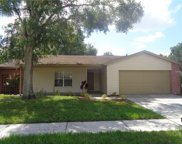 12816 Tallowood Drive, Riverview image