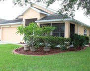 7228 Crested Orchid Drive, Brooksville image