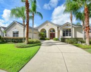 9064 Laurel Ridge Drive, Mount Dora image
