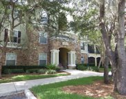 10123 Courtney Palms Boulevard Unit 303, Tampa image