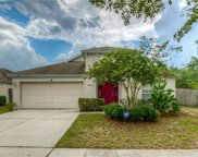 12201 Ravens Nest Place, Riverview image