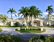 13342 Rosewood Ln, Naples image