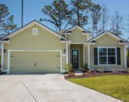 17 Cyclamen Court, Murrells Inlet image