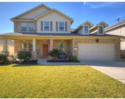 30111 Bumble Bee Dr, Georgetown image