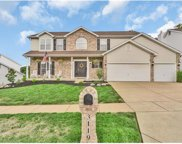 3119 Piney Pointe, St Louis image