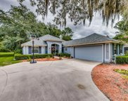 3716 GLYN COTTAGE CT, Green Cove Springs image