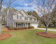 222 Mossy Oak Way, Mount Pleasant image