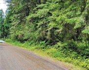 12807 Camus Road, Anderson Island image