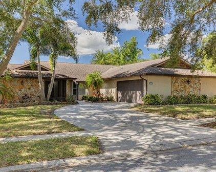 3460 Snowy Egret Court, Palm Harbor