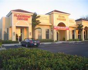 28500 Bonita Crossing Blvd, Bonita Springs image