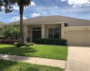 25636 Risen Star Drive, Wesley Chapel image