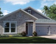 10253 Lovegrass Lane, Orlando image
