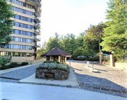 25 Rockledge  Avenue Unit #301, White Plains image