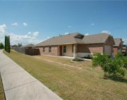 165 Willow Leaf Ln, Buda image