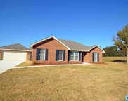 25 Co Rd 952, Clanton image