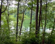 na Rocky Bluff Drive  Fontana Lake Estates, Bryson City image