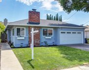 20626 Yeandle Ave, Castro Valley image