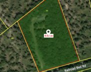 257 Railroad Bed Rd, Summertown image
