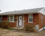 8705 Ione, St Louis image